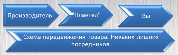 vidy-tekstov-dlya-sajta-16-min