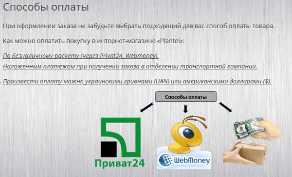 vidy-tekstov-dlya-sajta-24-min
