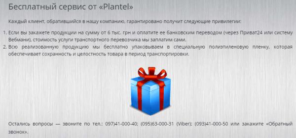 vidy-tekstov-dlya-sajta-26-min