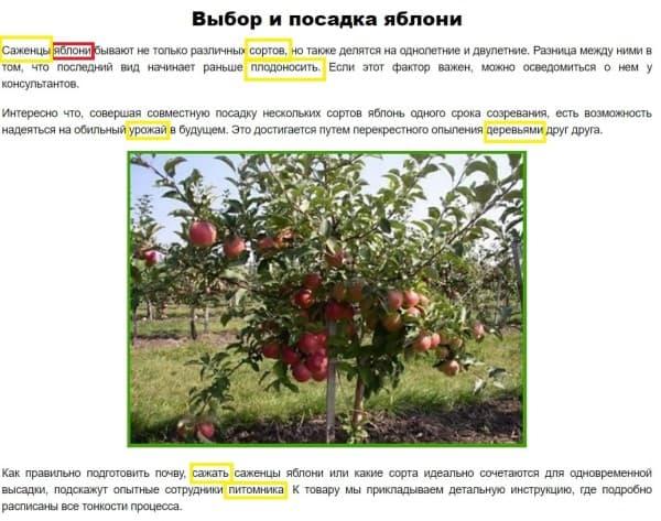 Скрин статьи про выбор и посадку яблони