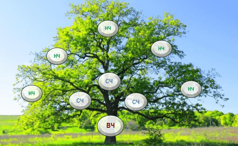 Семантическое ядро для сайта: ВЧ, СЧ, НЧ ключи