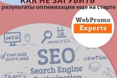 статья для сайта WebPromoExperts